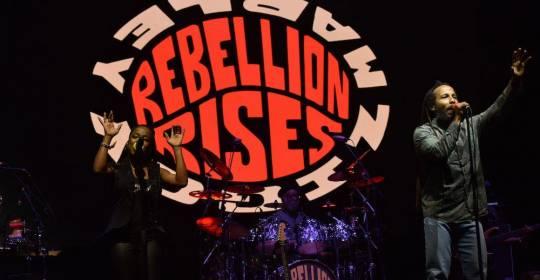 Udiscovermusic: Ziggy Marley Performs A Virtual 'Rebellion Rises' Set